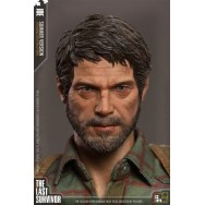 CC Toys 1/6 Scale  The Last Survivor Joe