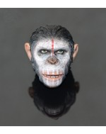 OSK1508546 1/6 Scale Ape Head Sculpt