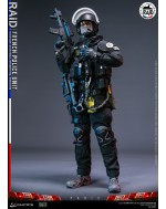 DAMTOYS 78061 1/6 Scale FRENCH POLICE UNIT--- RAID IN PARIS