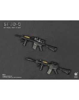 Easy & Simple 1/6 Scale 06011 SFOD-D Assault Rifle Set