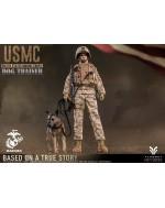 Flagset FS-73042 1/6 Scale US Marine Dog Trainer