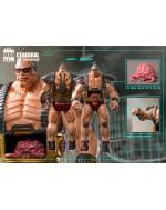HeroClub 1/6 Scale Big Boss Cerebral C01