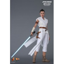 Hot Toys MMS559 1/6 Scale REY AND D-O