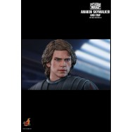 Hot Toys TMS020 1/6 Scale ANAKIN SKYWALKER AND STAP