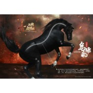 "IN FLAMES 1/12th scale ""Sets Of Soul Of Tiger Generals - Zhang Yide DX Version"