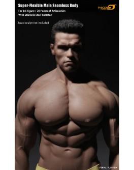 TBLeague 1/6 Scale PL2016-M34 Seamless Advanced Muscular Body