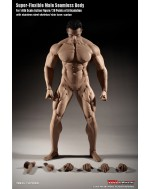TBLeague (PHICEN) 1/6 Scale M35 Seamless Advanced Muscular Body