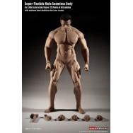 TBLeague (PHICEN) 1/6 Scale M35 Seamless Advanced Muscular Body