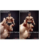 TBLeague 1/12th Scale Seamless Muscular Body in 2 styles