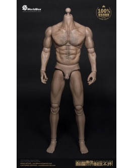 WorldBox 1/6 Scale Thick Chest and Broad Shoulder Durable Body